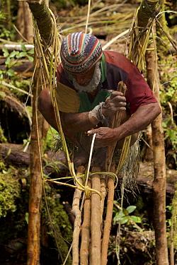 Huli elder constructing a traditional vine and pole suspension bridge over a stream. Papua New Guinea, November 2010.