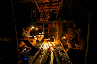 Camp life at Sombom Camp in the Saruwaged Range, Huon Peninsula. Photographer Tim Laman (front left) and ornithologist Ed Scholes (back left), and Papua New Guinean field assistants warm up at the fir...