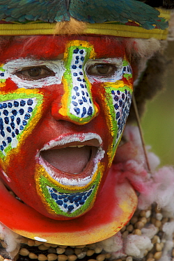 Villager in traditional costume with painted face singing at Goroka Cultural Show in the Eastern Highlands Province, Papua New Guinea. September 2004