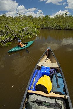 Russell Laman paddling a kayak through mangroves of the Hell's Bay Canoe Trail, Everglades National Park, Florida, USA, Model released, April 2008