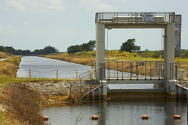 Canal just outside Everglades National Park disrupts historic water flow, Florida, USA.