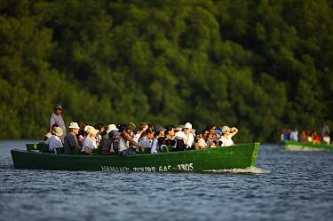 Tourists taking a boat tour of the Caroni Swamp. Caroni Bird Sanctuary, Trinidad, Trinidad and Tobago. February 2006