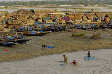 Villagers in the village of Chandpai on the Passur River, where shrimp fry fishing to supply shrimp for the shrimp ponds is the main industry. Villagers live in simple mud and thatch huts that are was...