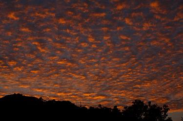 Sunset from high on Pico Basile, Bioko Island, Equatorial Guinea, January 2008