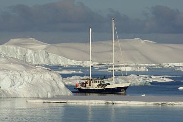 Antarctic charter vessel, Golden Fleece, with BBC film crew aboard. Antarctica, February 2009
