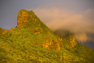 Rugged volcanic peaks of Moorea at sunset. Moorea Island, Society Islands, French Polynesia. July 2006