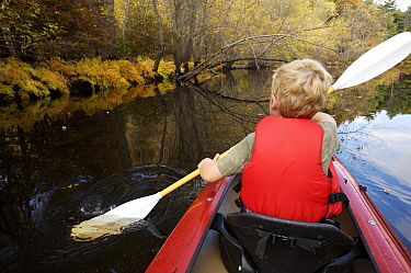 A boy kayaking on the Concord River in autumn, Massachusetts, USA, October 2006, model released