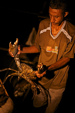 Silas, headman of Kabilo Village holding a Giant Mud Crab, caught whilst spearfishing at night from canoes in Mayalibit Bay. Waigeo Island, West Papua, Indonesia, April 2007