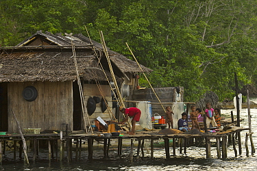 A family at their house in Kabilo Village. This is an area of Waigeo Island visited by Alfred Russel Wallace in the 1850's. West papua, Indonesia, April 2007