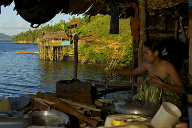 Semi-permanent fishermans camp at Tanjung Besi, Gam Island. These outsiders from Buton Island, Sulawesi, come here for months at a stretch to fish at night for small fish. This view is inside one of...