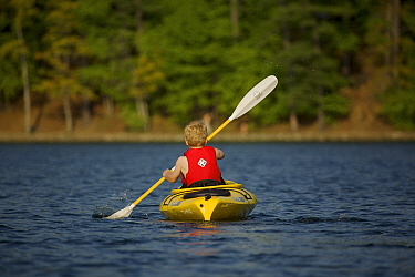 Rear view of a 6 year boy kayaking on Walden Pond, Massachusetts, USA, model released, May 2007