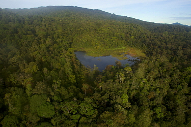 Lake at 1650 m elevation in the Foja Mountains. Site of the base camp called 'Bog Camp'. Foja Mountains, Papua, Indonesia, 2008. (taken during Conservation International Rapid Assessment Program exped...