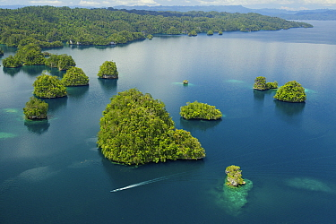 Limestone Islands of Kabui Bay, near the East end of the Passage between Gam and Waigeo. Waigeo Island at top. A local boat is heading for the Passage. Raja Ampat Islands, West Papua, Indonesia. Octob...