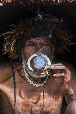 Dani tribe man with traditional headress and nose septum piercing, Budaya village, Suroba, Trikora Mountains, West Papua, Indonesia. October 2020.