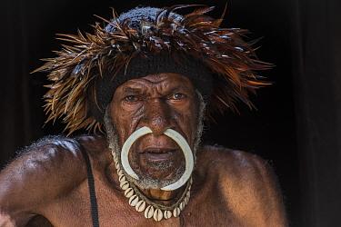 Dani tribe man, Budaya village, Suroba, Trikora Mountains, West Papua, Indonesia. October 2020.