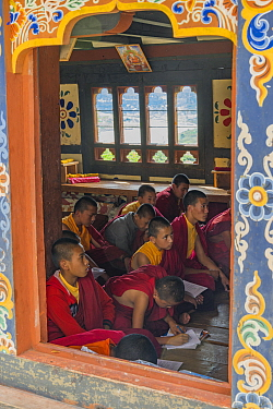 Young Buddhist monks in class. Chime Lhakhang Temple (The 'fertility temple'). Bhutan. September 2013.