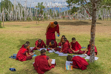 Young Monks in class. Chime Lhakhang Temple (The 'fertility temple') Bhutan. September 2013.