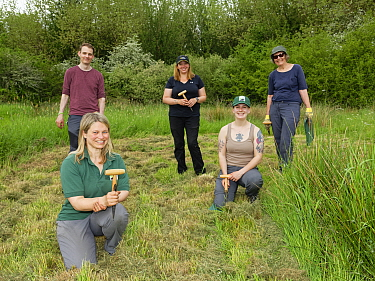 Ellie Jones of Wiltshire Wildlife Trust and a team of volunteers holding their dibbers after using them to dig holes for hundreds of Devil's bit scabious (Succisa pratensis) plant plugs in a forme...