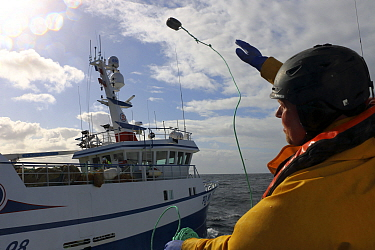 Crewman throwing heaving line during pair trawling operations. North Sea, March.