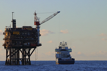 Supply vessel ' Rem Mistral' offloading cargo at 'Forties Echo', North Sea. August 2020.