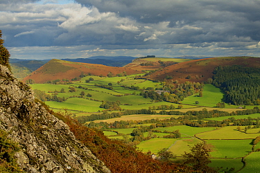 Herrock, Rushock and Bradnor Hill and the Back Brook glacial and meltwater valley in Herefordshire, from Hanter Hill, Stanner-Hanter Complex of the Neoproterozoic Age, Radnorshire, the Welsh Marches,...