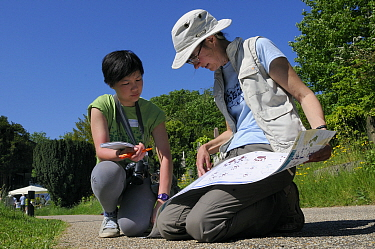Volunteer Shen Yan Liow looks on as mammalogist Gill Brown refers to a mammal footprint identification chart during Arnos Vale Cemetery Bioblitz, Bristol, UK, May 2012 Model released.