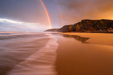 RF - Sandymouth Bay, early morning light and rainbow at low tide, north Cornwall, UK. December 2020. (This image may be licensed either as rights managed or royalty free.)