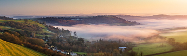 Dorset from Somerset; layers of mist at dusk near Sandford Orcas from Corton Denham Beacon on a winter's afternoon, England, UK. January 2020.