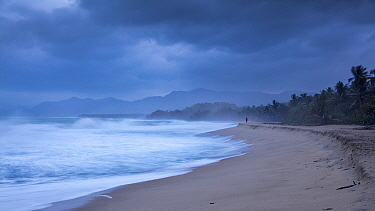 Jogger in distance on Playa Naranjos and the Caribbean Coast at dawn, Magdalena, Colombia
