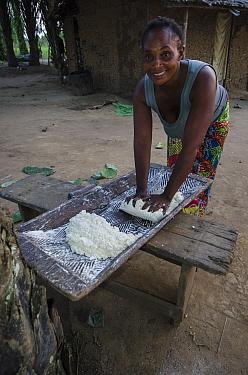 Woman kneading manioc dough, Republic of Congo (Congo-Brazzaville), Africa, June 2013.