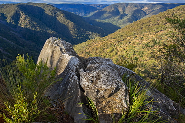 View across gorge, Bungonia Gorge and Shoalhaven River with rock in foreground, Morton National Park, Southern Tablelands of New South Wales, Australia.