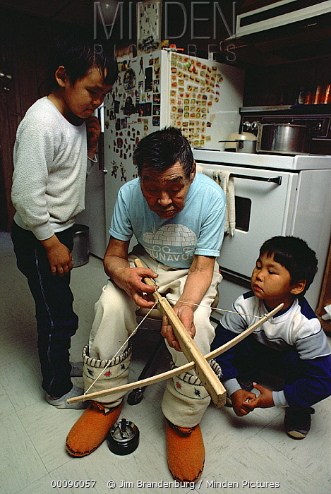 Philipoosie Novalinge shows kids how to use crossbow, he was a role model for the documentary Nanook of the North, Ellesmere Island, Nunavut, Canada  -  Jim Brandenburg