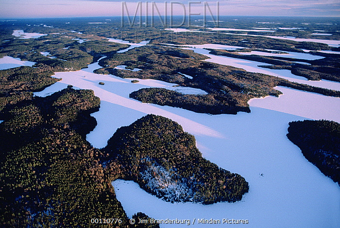 Boreal forest and frozen lakes, Boundary Waters Canoe Area Wilderness, Minnesota  -  Jim Brandenburg