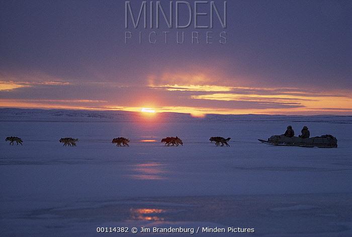 Inuits dog sledding in midnight sun, Ellesmere Island, Nunavut, Canada  -  Jim Brandenburg