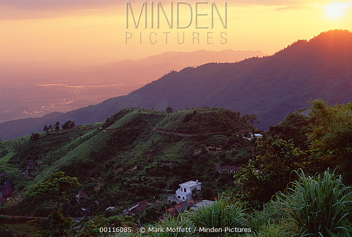 Sunset over the Tam Dao Mountains, Tam Dao National Park, Vietnam  -  Mark Moffett
