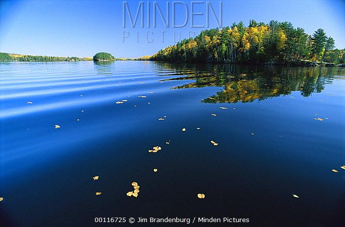 Lake with fall colored leaves, Minnesota  -  Jim Brandenburg