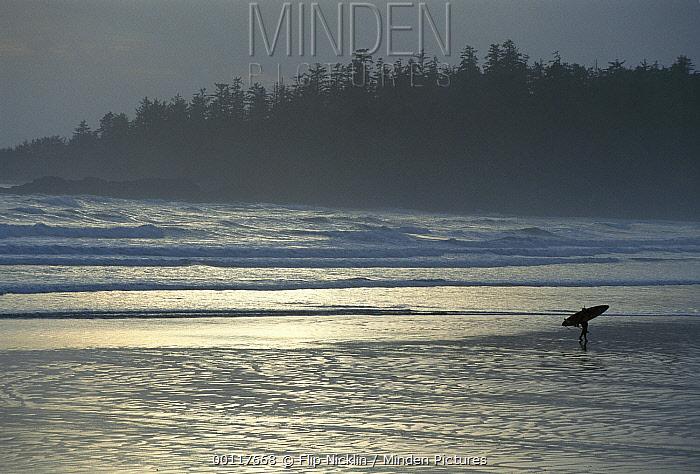 Surfer on Long Beach, Clayoquot Sound, Vancouver Island, British Columbia, Canada  -  Flip  Nicklin
