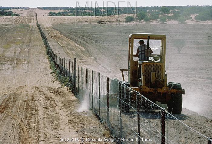 Tractor driving along dingo fence, Australia  -  Mitsuaki Iwago