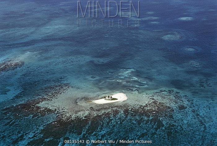 Motu or reef island, formed of accumulated sand and debris on the Belize Barrier Reef  -  Norbert Wu