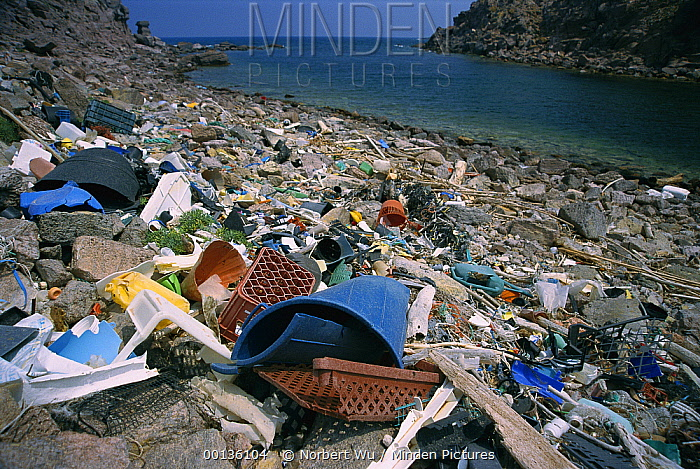 Trash on beach impacts the coastal ecosystem, Mediterranean Sea, Sardinia, Italy  -  Norbert Wu