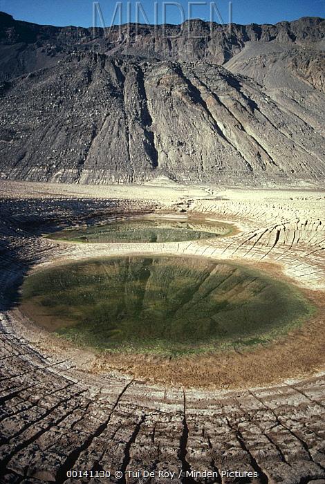 Volcanic caldera, remains of lake after eruption, caldera floor, Fernandina Island, Galapagos Islands, Ecuador  -  Tui De Roy