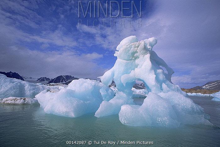 Summer icebergs, Spitsbergen Island, Svalbard Archipelago, Norwegian Arctic  -  Tui De Roy