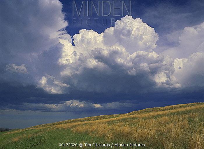 Grassland and cumulus clouds, Wind Cave National Park, South Dakota  -  Tim Fitzharris