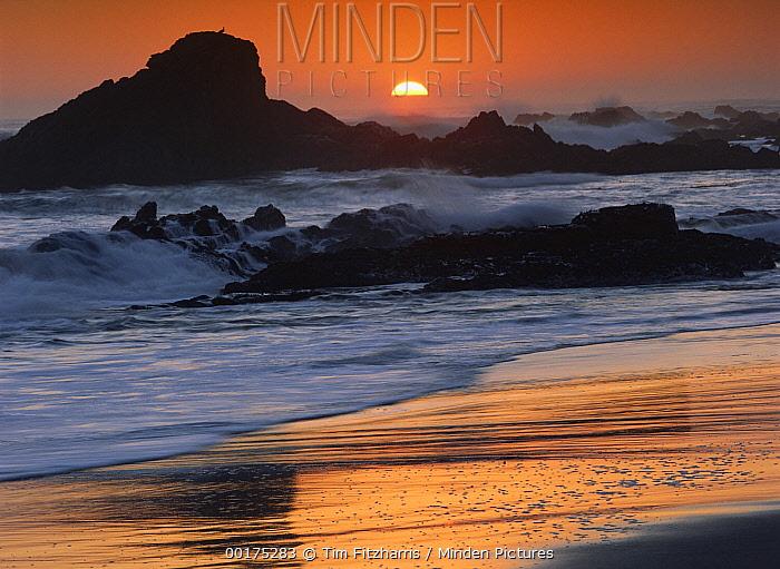 Crashing surf on rocks at sunset, Point Piedras Blancas, California  -  Tim Fitzharris