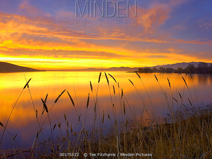 Sunrise at San Luis Reservoir, San Joaquin Valley, California  -  Tim Fitzharris