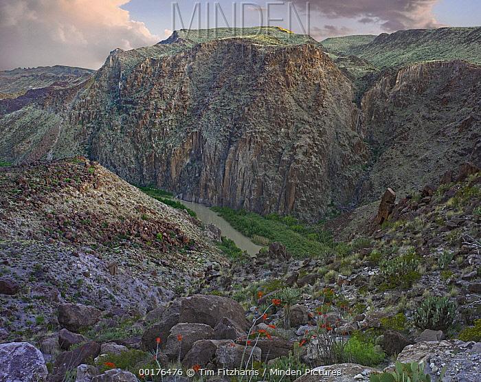 Rio Grande winding through Madera Canyon, Big Bend Ranch State Park, Chihuahuan Desert, Texas  -  Tim Fitzharris