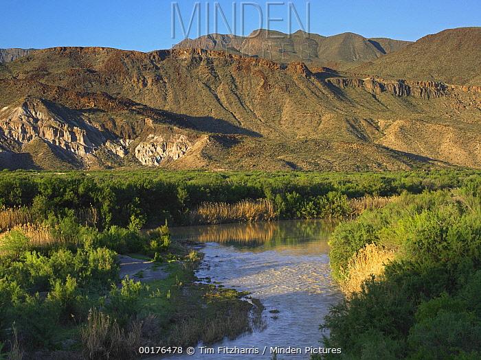 Rio Grande, Big Bend Ranch State Park, Chihuahuan Desert, Texas  -  Tim Fitzharris