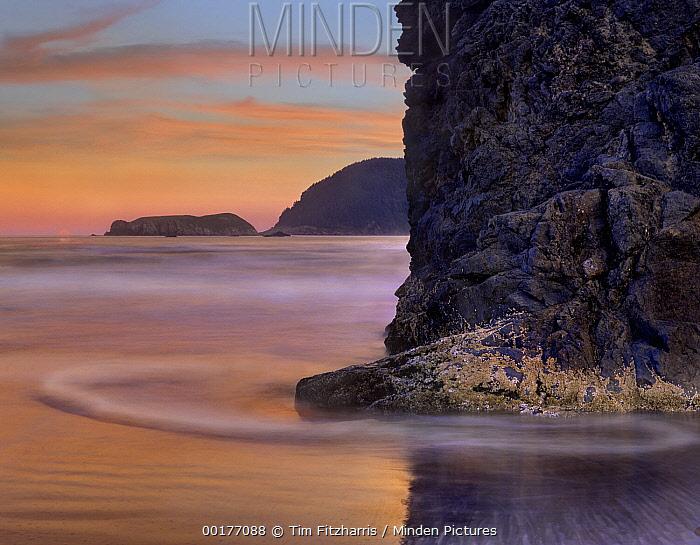 Barnacle-covered seastack at sunset, Pistol River Beach, Oregon  -  Tim Fitzharris