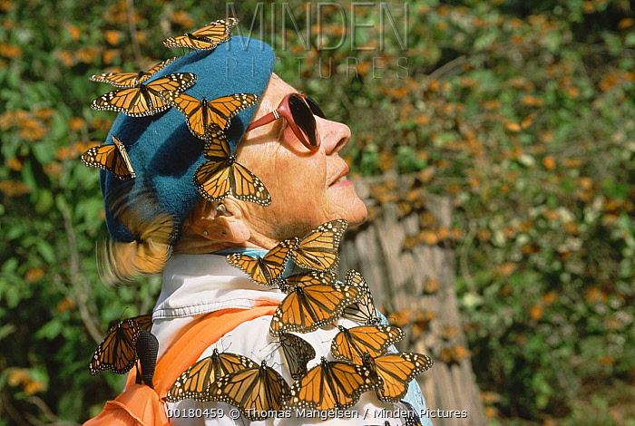 Monarch (Danaus plexippus) butterfly group perching on a female tourist, El Rosario Monarch Butterfly Sanctuary, Mexico  -  Thomas Mangelsen