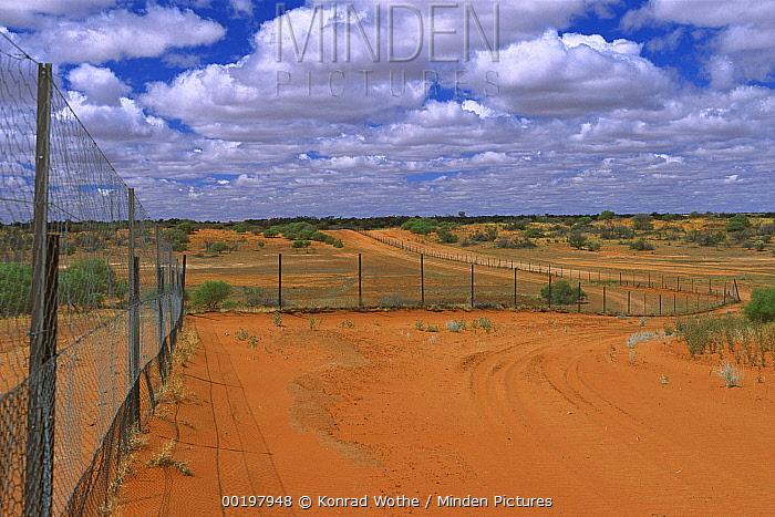 Dingo fence between New South Wales and Queensland, Cameron Corner, Australia  -  Konrad Wothe
